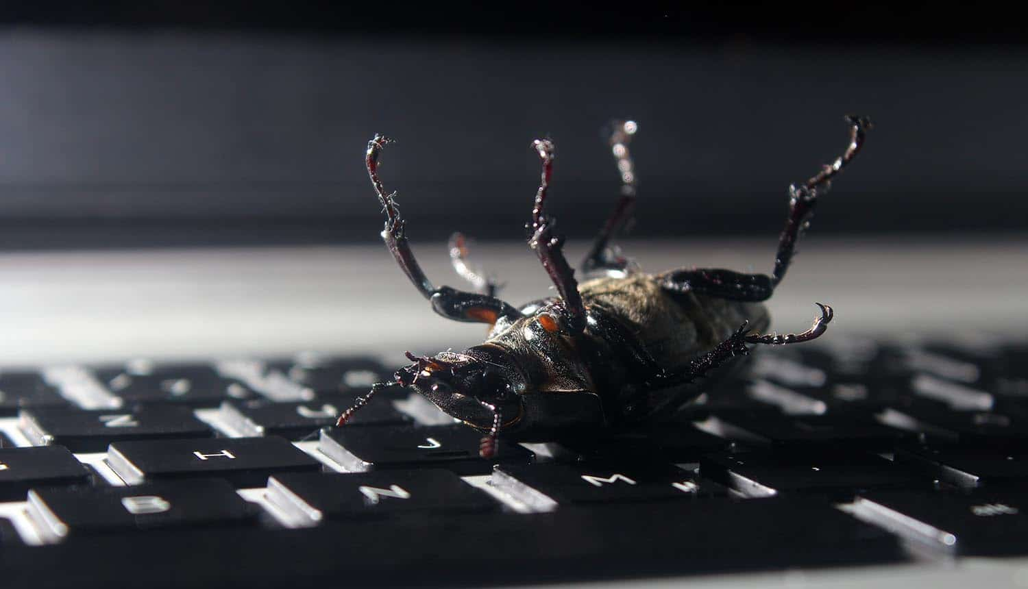Image of a dead bug on keyboard representing how the Hack the Air Force bug bounty program has found 207 vulnerabilities
