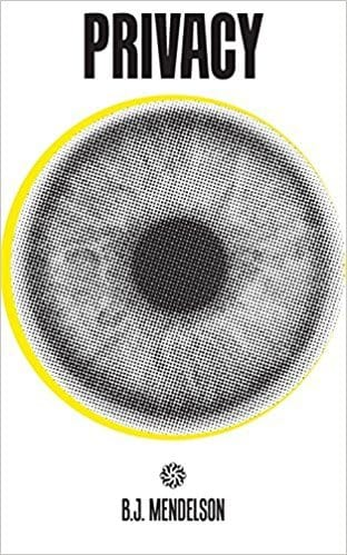 Image of the book cover for Privacy And How to Get It Back by B.J. Mendelson