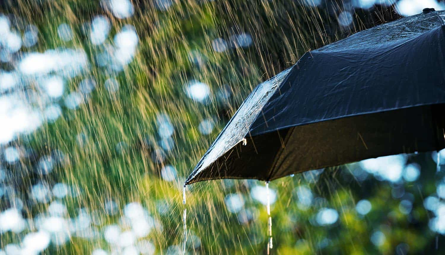 Umbrella in rain showing how AIG case highlights complexities of covering cyber-related losses