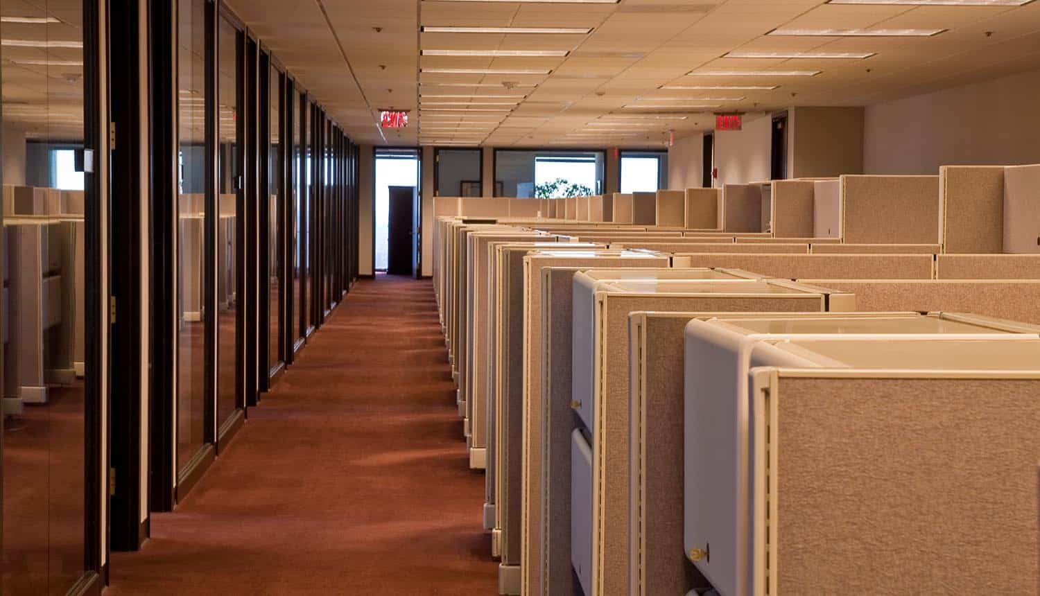 A row of beige cubicles in a modern office building showing growing cybersecurity workforce shortage