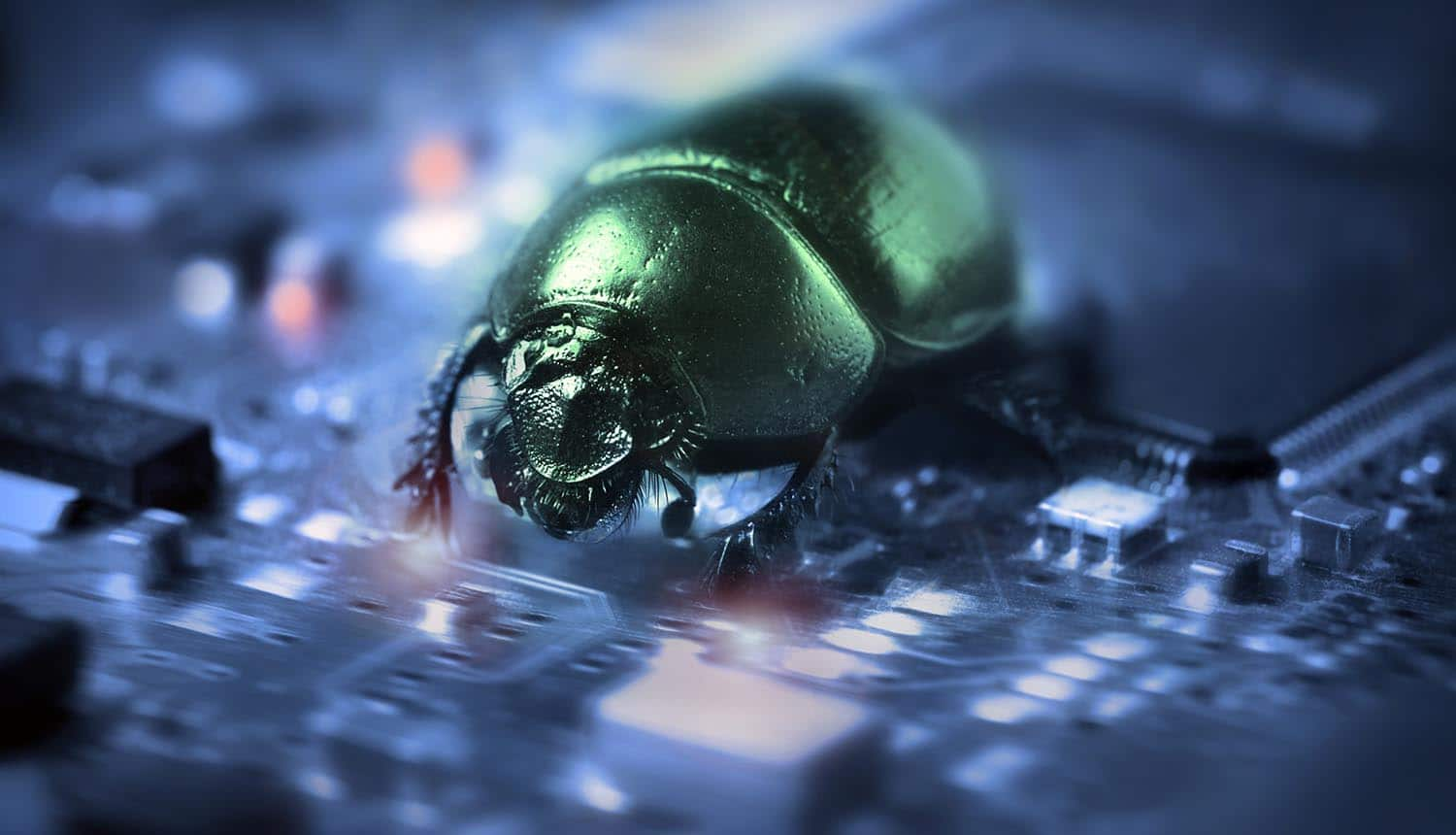 Bug on a computer chip showing the list of top 25 software vulnerabilities released by Department of Homeland Security