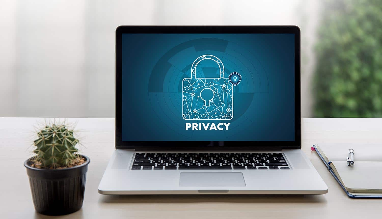 Privacy logo on laptop screen showing the interview with renown privacy expert on her perspectives on digital ethics and privacy