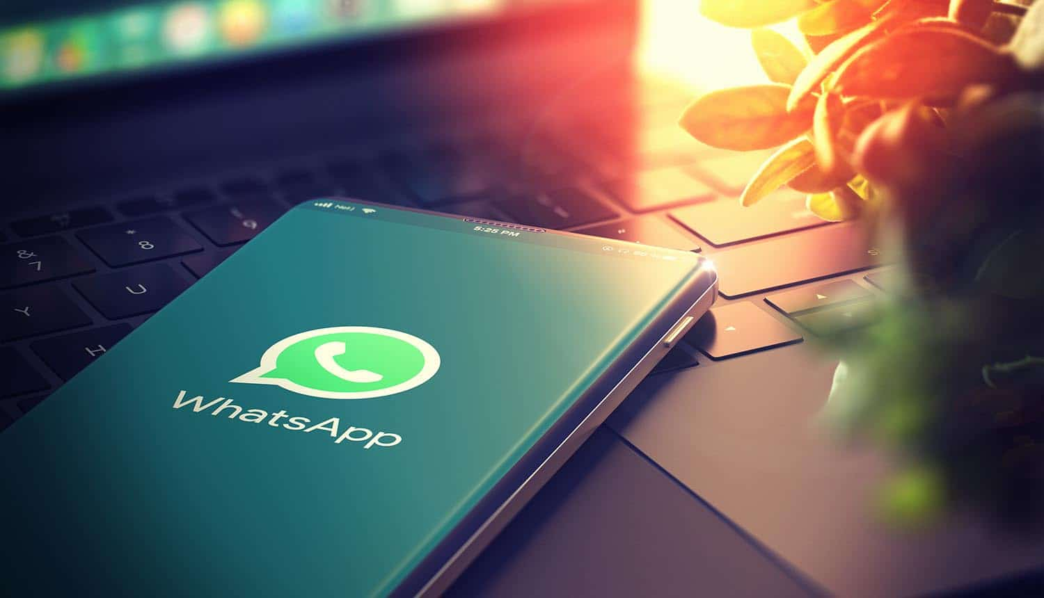 WhatsApp Phone Numbers From Private Profiles Leaked to the Public via Google Search - CPO Magazine