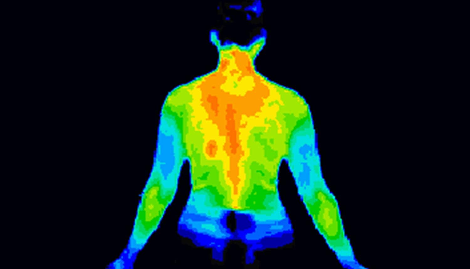 Thermographic image of the back of the upper body showing medical data leaks