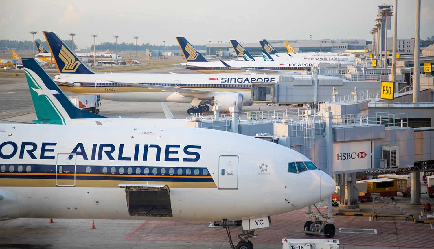 Singapore Airlines planes at the jet bridge of airport showing supply chain attack affecting major airlines